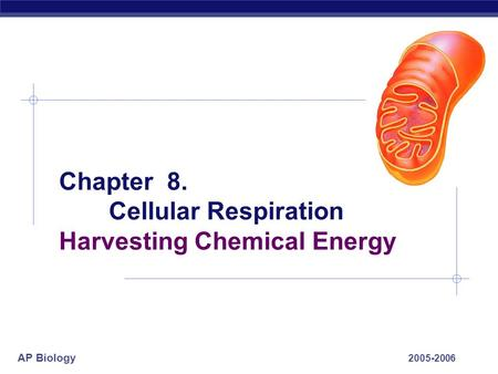 AP Biology 2005-2006 Chapter 8. Cellular Respiration Harvesting Chemical Energy.