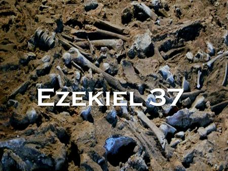 Ezekiel 37. The vision concerned Israel (v11) They found themselves in exile over in Babylon because of their sin They are desperate and depressed But.