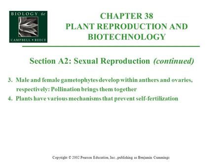 CHAPTER 38 PLANT REPRODUCTION AND BIOTECHNOLOGY Copyright © 2002 Pearson Education, Inc., publishing as Benjamin Cummings Section A2: Sexual Reproduction.