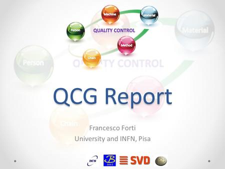 QCG Report Francesco Forti University and INFN, Pisa.