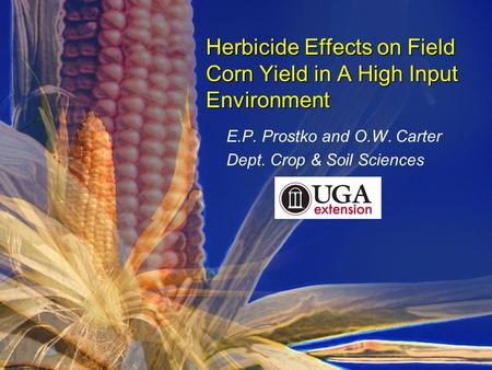 E.P. Prostko and O.W. Carter Dept. Crop & Soil Sciences Herbicide Effects on Field Corn Yield in A High Input Environment.