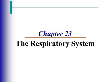 Chapter 23 The Respiratory System. Function of the Respiratory System Slide 13.2 Copyright © 2003 Pearson Education, Inc. publishing as Benjamin Cummings.