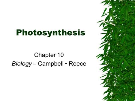Photosynthesis Chapter 10 Biology – Campbell Reece.