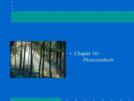 Chapter 10~ Photosynthesis. Photosynthesis in nature Autotrophs: biotic producers; can be photoautotrophs or chemoautotrophs; Heterotrophs: biotic consumers;