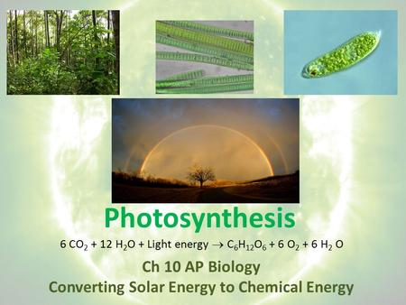 Photosynthesis Ch 10 AP Biology Converting Solar Energy to Chemical Energy 6 CO 2 + 12 H 2 O + Light energy  C 6 H 12 O 6 + 6 O 2 + 6 H 2 O.