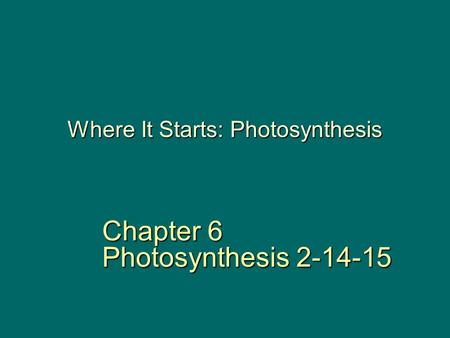 Where It Starts: Photosynthesis Chapter 6 Photosynthesis 2-14-15.