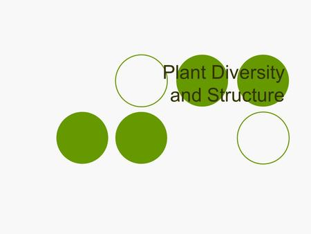 Plant Diversity and Structure. Kingdom Plantae Eukaryotic Multicellular Mostly terrestrial  Increased sunlight, more CO 2, nutrient rich soils Cell walls.