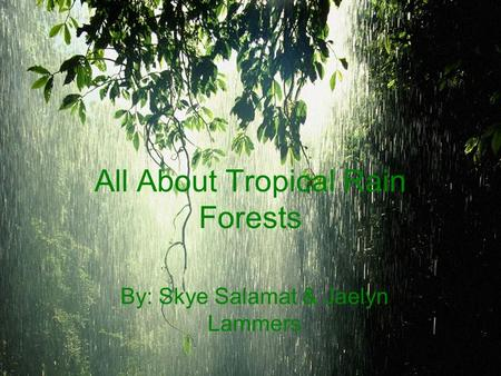 All About Tropical Rain Forests By: Skye Salamat & Jaelyn Lammers.