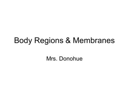 Body Regions & Membranes Mrs. Donohue. 1. What are the 5 major body regions? head Chest (thoracic) Abdomen Upper exremities Lower extermities.