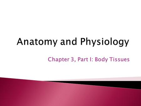 Chapter 3, Part I: Body Tissues. 1. Histology: ◦ the study of tissues. 2. Tissues: ◦ group of cells which are similar in structure and perform common.
