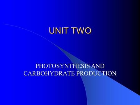 UNIT TWO PHOTOSYNTHESIS AND CARBOHYDRATE PRODUCTION.
