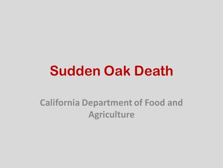 Sudden Oak Death California Department of Food and Agriculture.
