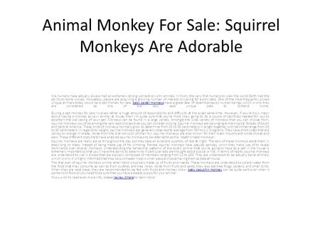 Animal Monkey For Sale: Squirrel Monkeys Are Adorable We humans have actually always had an extremely strong connection with animals. In truth, the very.