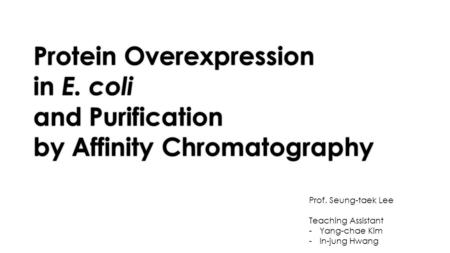 Protein Overexpression in E