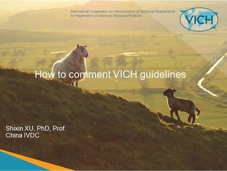 How to comment VICH guidelines Shixin XU, PhD, Prof. China IVDC.