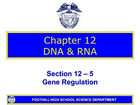 FOOTHILL HIGH SCHOOL SCIENCE DEPARTMENT Chapter 12 DNA & RNA Section 12 – 5 Gene Regulation.