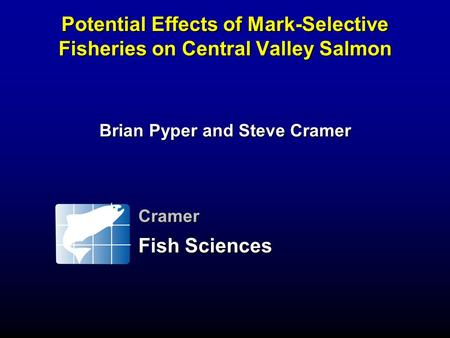 Potential Effects of Mark-Selective Fisheries on Central Valley Salmon Brian Pyper and Steve Cramer Cramer Fish Sciences.