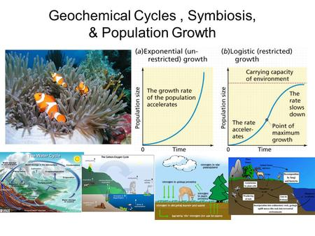 Geochemical Cycles, Symbiosis, & Population Growth.