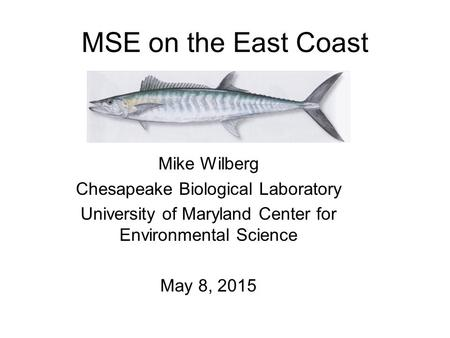 MSE on the East Coast Mike Wilberg Chesapeake Biological Laboratory University of Maryland Center for Environmental Science May 8, 2015.