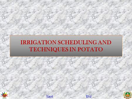IRRIGATION SCHEDULING AND TECHNIQUES IN POTATO NextEnd.