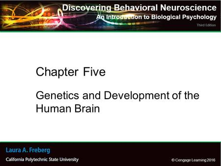 © Cengage Learning 2016 Genetics and Development of the Human Brain Chapter Five.