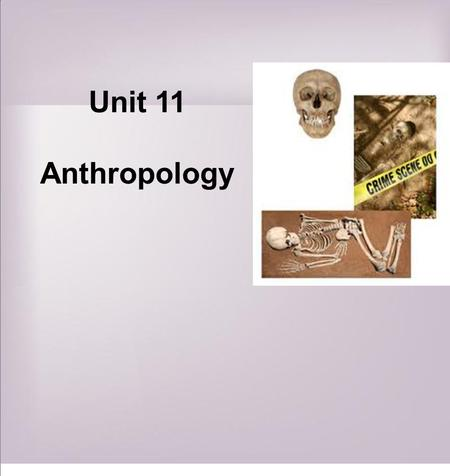 Unit 11 Anthropology. studies human skeletal remains to determine the age, sex and race of the deceased identifies any illnesses or injuries that he or.