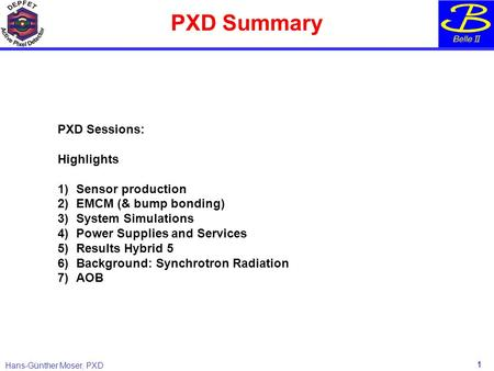 Hans-Günther Moser, PXD PXD Summary 1 PXD Sessions: Highlights 1)Sensor production 2) EMCM (& bump bonding) 3)System Simulations 4)Power Supplies and Services.