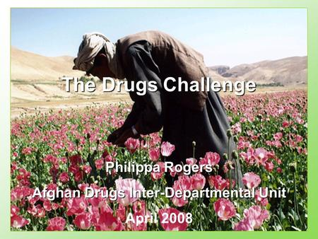 Philippa Rogers Afghan Drugs Inter-Departmental Unit April 2008 The Drugs Challenge.