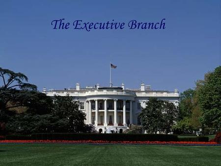 The Legislative Branch The Executive Branch. Relevant Standards of Learning CE.6The student will demonstrate knowledge of the American constitutional.
