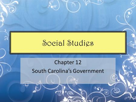 Social Studies Chapter 12 South Carolina's Government.