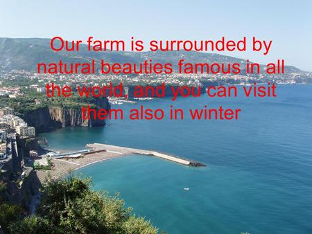 Our farm is surrounded by natural beauties famous in all the world, and you can visit them also in winter.