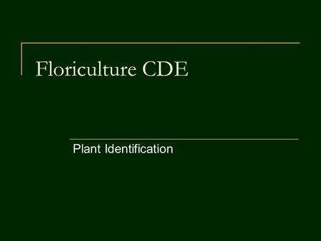Floriculture CDE Plant Identification.