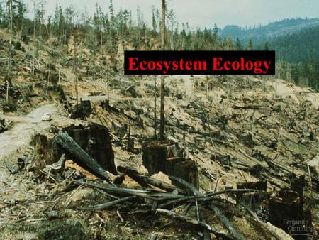 Ecosystem Ecology. I. Ecosystems A. Definition 1. An ecosystem is an association of organisms and their physical environment, 2. Linked by a flow of energy.