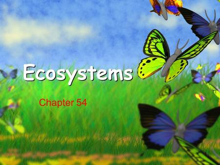 1 Ecosystems Chapter 54. What you need to know How energy flows through the ecosystem The difference between gross primary productivity and net primary.