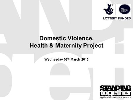 Domestic Violence, Health & Maternity Project Wednesday 06 th March 2013.