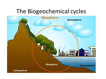 The Biogeochemical cycles. What is the Biosphere All living things and their habitats found in water, on land and in the air make up the biosphere. It.
