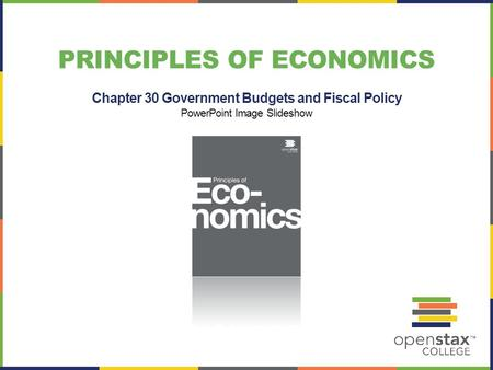 PRINCIPLES OF ECONOMICS Chapter 30 Government Budgets and Fiscal Policy PowerPoint Image Slideshow.