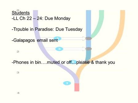 Students -LL Ch 22 – 24: Due Monday -Trouble in Paradise: Due Tuesday -Galapagos email sent -Phones in bin….muted or off…please & thank you.