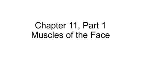 Chapter 11, Part 1 Muscles of the Face. Fig. 11.2a Facial expression muscles originate in superficial fascia or on skull bones Insert into superficial.