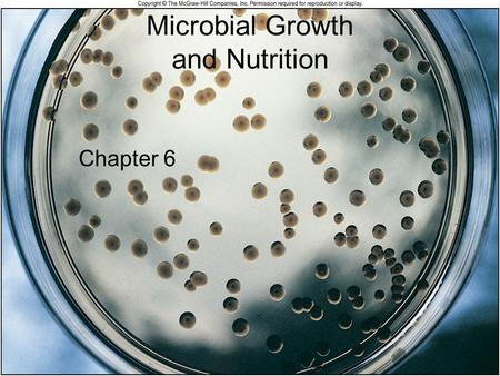 Microbial Growth and Nutrition Chapter 6. 2 Microbial growth –Increase in a population of microbes Result of microbial growth is discrete colony –An aggregation.