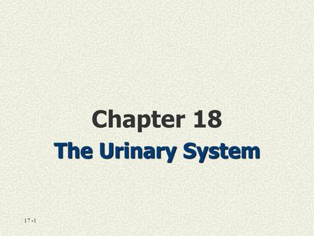 17 -1 Chapter 18 The Urinary System. 18-1: The Urinary System Functions of the urinary system: Excretion Excretion—removal of waste products Elimination.
