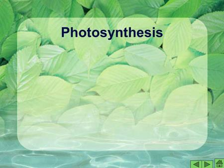 Photosynthesis. Saving for a Rainy Day Suppose you earned extra money by having a part- time job. At first, you might be tempted to spend all of the money,