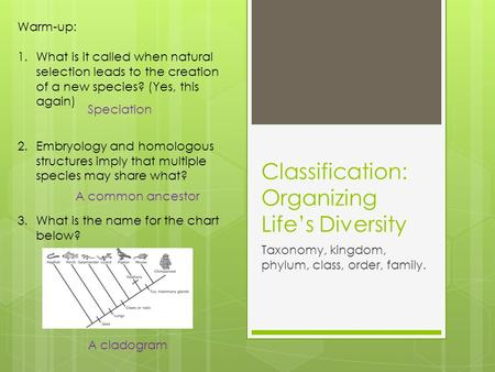 Classification: Organizing Life's Diversity Taxonomy, kingdom, phylum, class, order, family. Warm-up: 1.What is it called when natural selection leads.