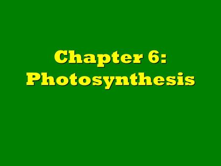 Chapter 6: Photosynthesis. 6-1: Capturing the Energy in Light.