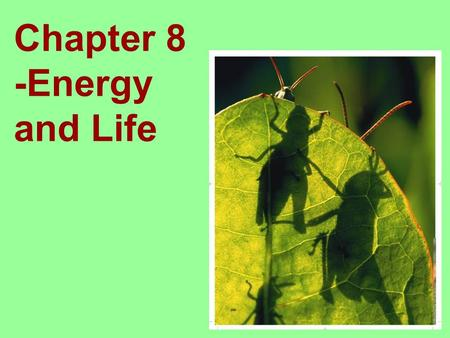 Chapter 8 -Energy and Life. Living things need energy to survive. This energy comes from food. The energy in most food comes from the sun. Where do plants.
