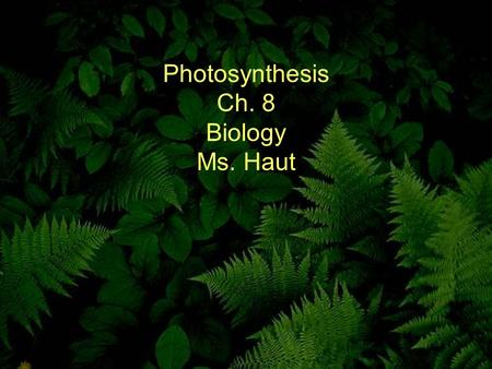 Photosynthesis Ch. 8 Biology Ms. Haut. 8-1 Energy and Life Copyright Pearson Prentice Hall.