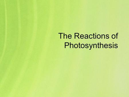 The Reactions of Photosynthesis. The process of photosynthesis is quite complex; you will only have to know a simplified overview of the steps and stages.