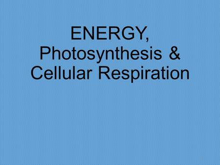 ENERGY, Photosynthesis & Cellular Respiration 1. Releasing Food Energy 2.