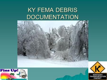 KY FEMA DEBRIS DOCUMENTATION. 2009 Ice Storm extent.
