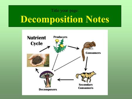 Title your page: Decomposition Notes. Its Recycling… Naturally READ ONLY Waste materials such as leaves and grass decompose 1 The material has decayed.